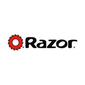 Reparatur für Elektroscooter Marke Razor